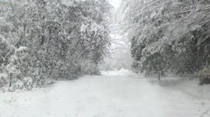 Noreaster-snow-storm-